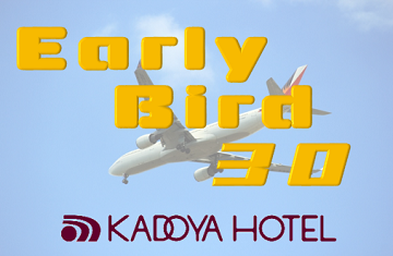 Discounted package for early booking 30 with Breakfast