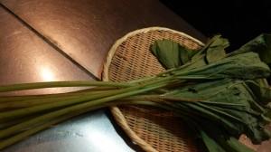 西新宿旅籠で春の食材(ふき)のお料理は、いかがでしょうか?