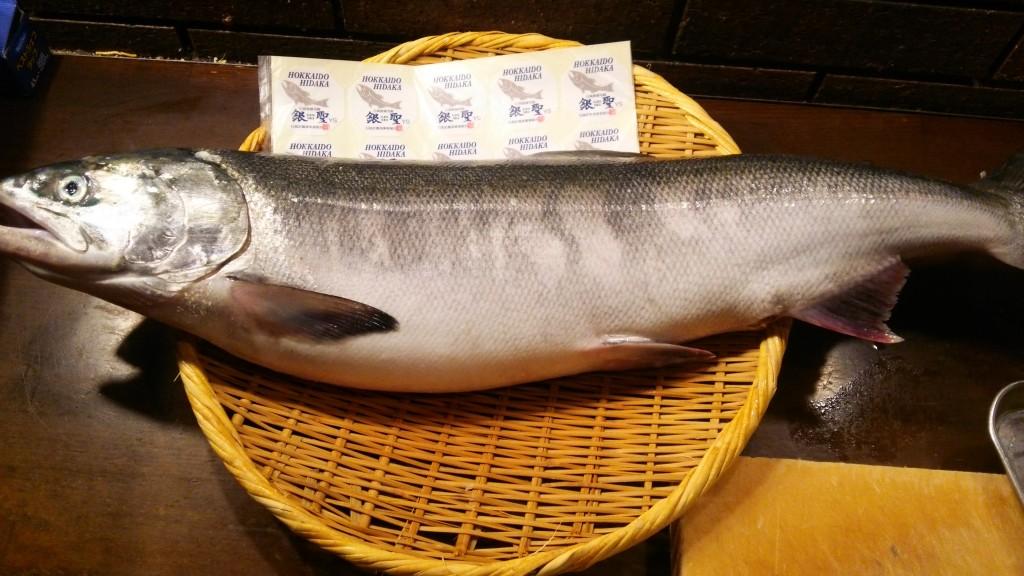 新宿個室居酒屋で秋鮭のルイベ!