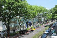 東京観光・家族旅行におすすめ!原宿・表参道までの行き方編。新宿かどやホテル