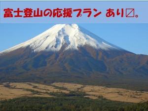 富士山が世界遺産に登録されました!高速バス乗り場からすぐ新宿かどやホテル