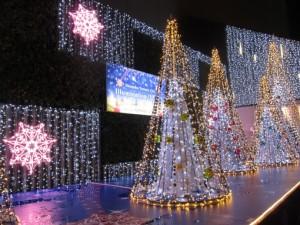 新宿西口ですぐに楽しむクリスマスイルミネーション かどやホテルから徒歩3分