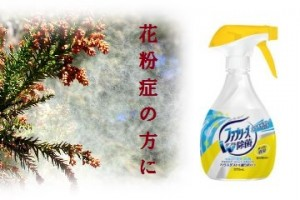 花粉症対策も大変!東京へ出張ビジネスマンにお勧めのプラン!