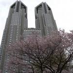 新宿で桜・お花見をするなら、新宿中央公園?新宿御苑?桜の見頃はいつ?