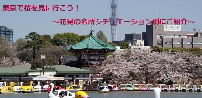 新宿から行く、おすすめ桜の名所❀みんなで♪友達と♪デートで♪桜を見に行こう