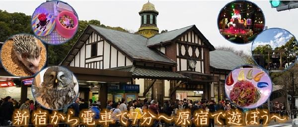 新宿から電車で5分 かどやホテルから行く、原宿観光♪