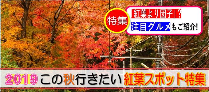 この秋行きたい!紅葉スポット2019